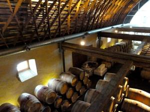 Burgenland - Deutschkreutz: Winery Igler/Schaflerhof