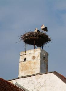 Rust: Storks