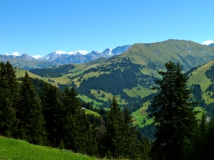 Gstaad: Hiking above Gstaad