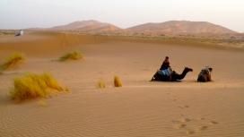 Sahara at Dusk